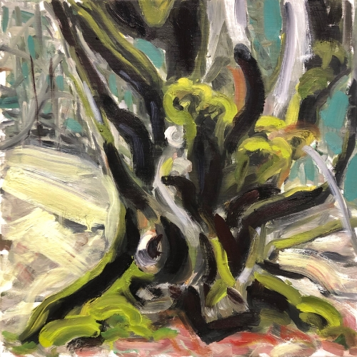 Trolltree Skogasel