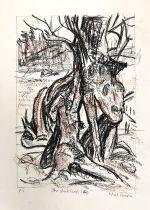 Skeleton oak study