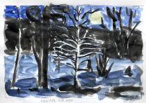 Silver birch sketch